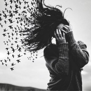 The Memory Birds