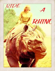 Ride a Rhino