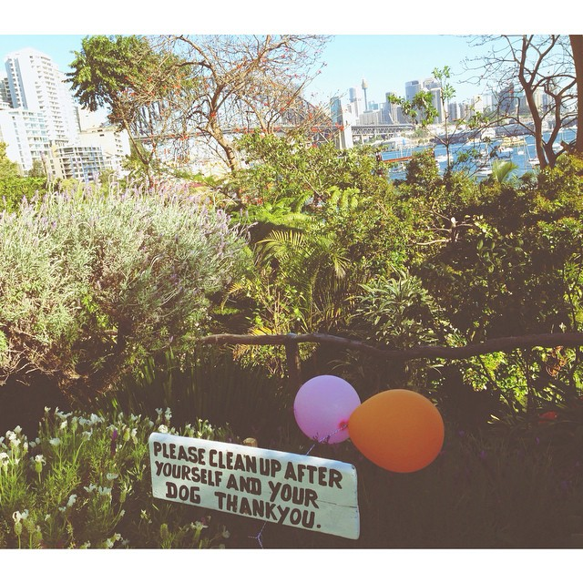 Please Clean Up. #secretgarden #wendy'sgift #lavenderbay #sydney