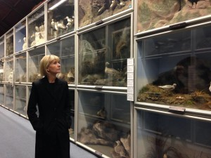 Kate at Booth Museum of Natural History