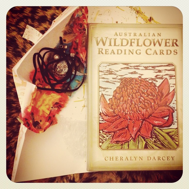 A lovely addition to my collection of cards. Australian Wildflower Reading Cards. Magical Flower energy Australian style. #chearalyndarcey #flowerenergy #spirit #signs #australianwildflowers #perfectgift