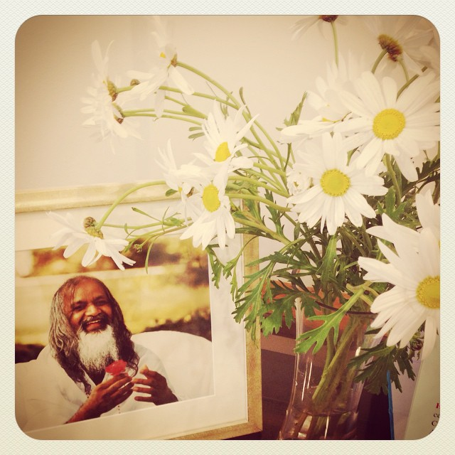 Exciting day today for the Pennicott Levells as we had our first Transcendental Meditation session at TM centre. Have been dying to experience TM for years and looking forward to seeing the benefits on my writing and life. #transcendentalmeditation #maharishi #daisy #family #flowerenergy #blessed #yorkstreet #spirit