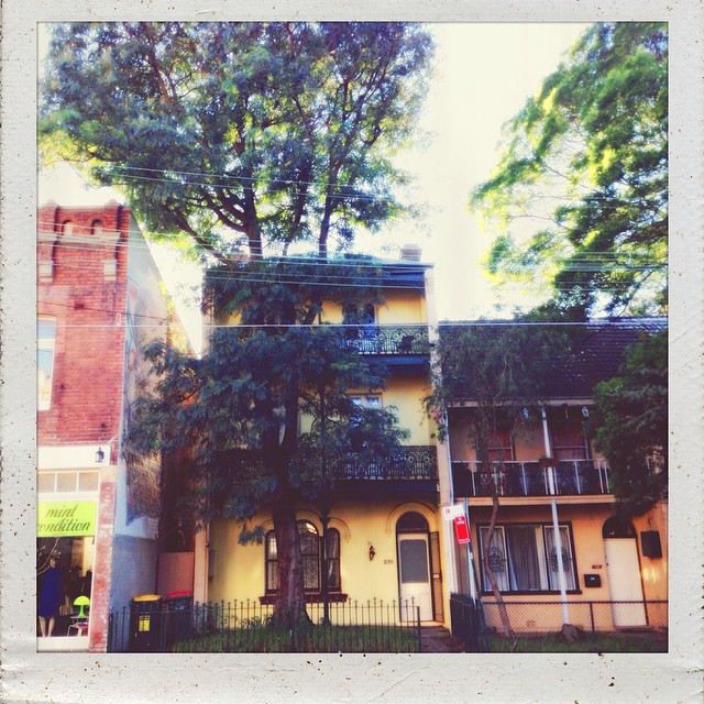 Love a yellow terrace bathed in Autumn sunshine. #housewithastory #kingstreet #newtown #sydneyterrace #innerwest